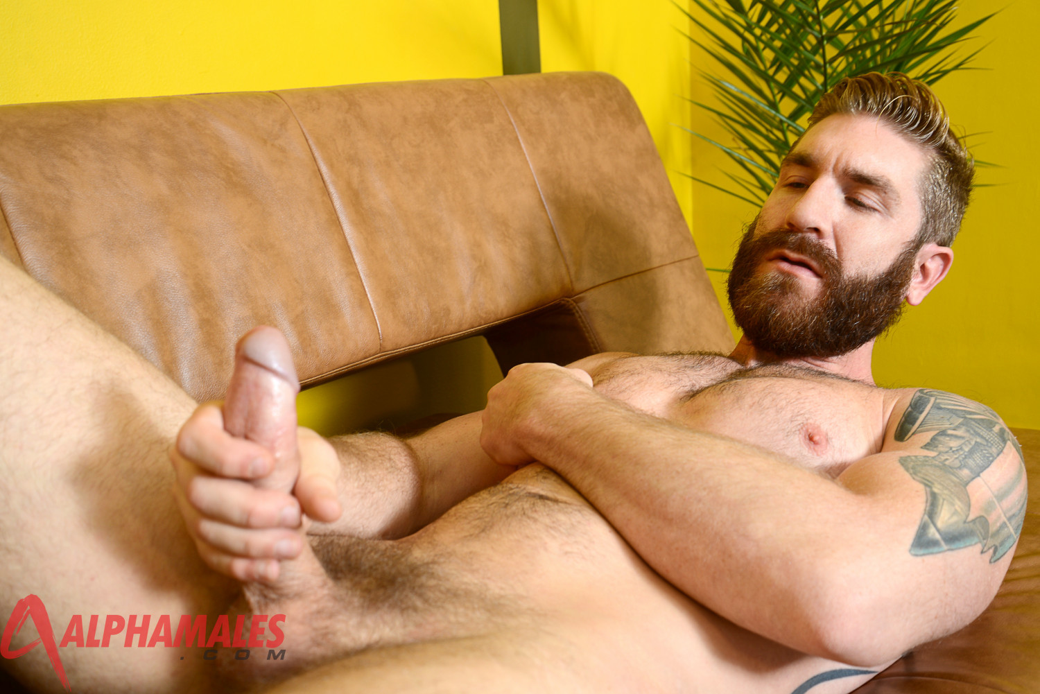 AlphaMales-Geoffrey-Paine-Big-Cock-Fleshlight-Fleshjack-Amateur-Gay-Porn-04 Amateur Hairy Muscle Stud Geoffrey Paine With Big Cock and Fleshjack